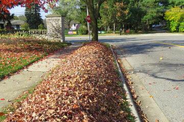 Curbside Leaf Pickup